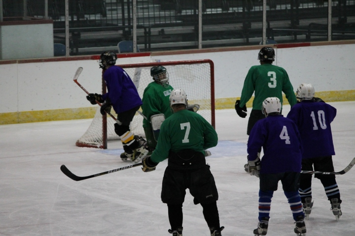 Look at the puck in there!